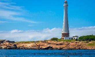 2 Hour Eco Tour In Punta del Este, Uruguay