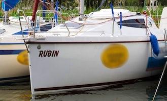 Antila 26 Rubin in Wilkasy