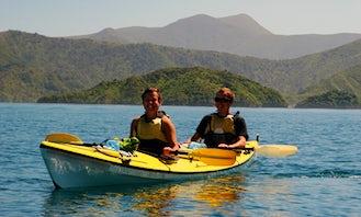 Guided Kayak Tour In Linkwater