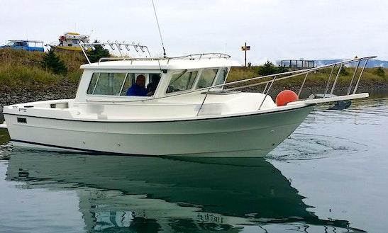 22' Inboard Propulsion Rental In Homer, Alaska