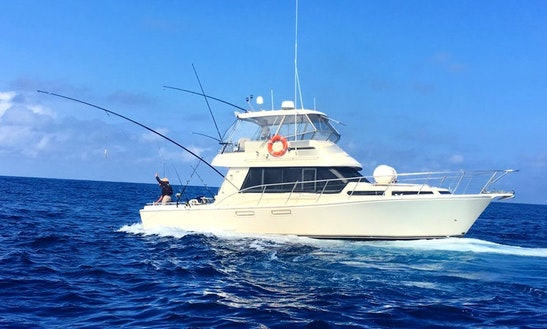 Head Hunter Charters Bermagui - Game Fishing Charter