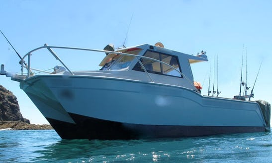Rent 26' Power Catamaran In Manukau, New Zealand