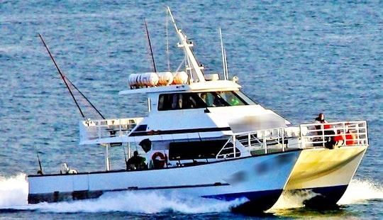 Fishing Adventure In Merimbula Aboard 60' Power Catamaran For 15 Person