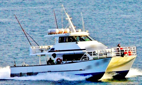 Fishing Adventure In Merimbula Aboard 60' Power Catamaran For 15 Person
