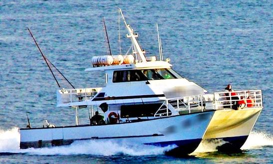 60' Power Catamaran
