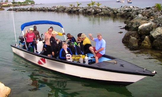 Diving, Snorkeling & Private Charters In Tobago