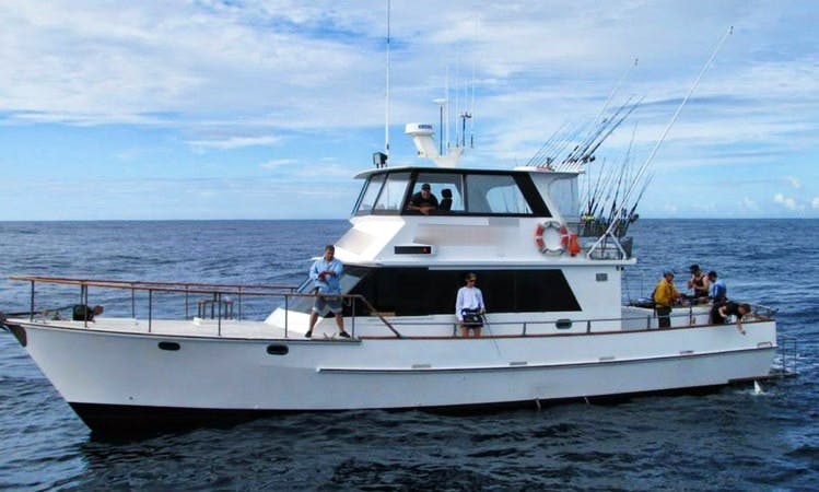 "Fishing Trips onboard the Magnificent ""Enchanter"" in White Island"