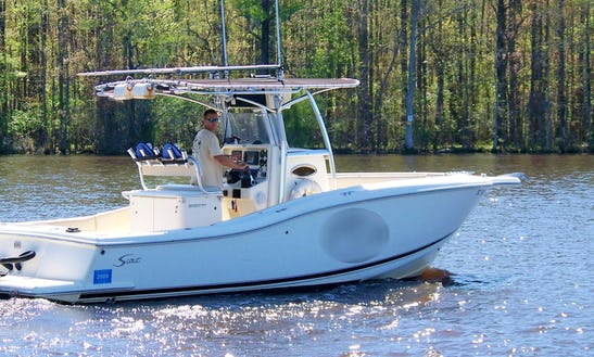 28' Scout Boat Deep Sea Fishing Charter In Murrells Inlet