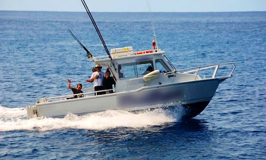 Enjoy Fishing In Lord Howe Island, New South Wales On 26' Cuddy Cabin