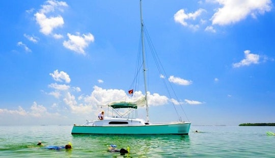 Enjoy Key West, Florida On 31' Java Catamaran