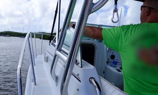 26' Power Catamaran Trips In Carriacou, Grenada