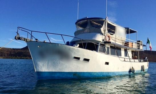 Private Boat Charter - Scuba, Snorkel, Fishing, Adventuring!