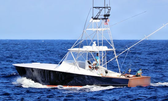 Marlin Fishing In Punta Cana