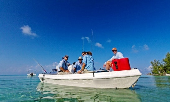 17' Skiffs Fishing Charters In Seychelles