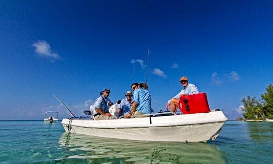 17' Skiffs Fishing Charters In Seychelles