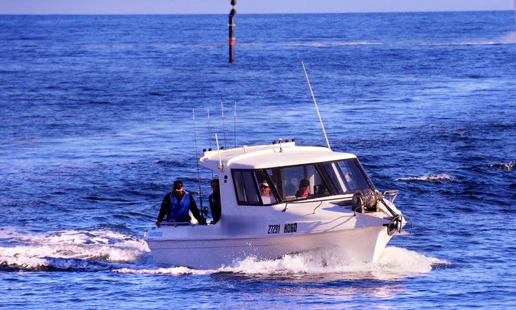 Enjoy Fishing in Cleve, Australia on Cuddy Cabin