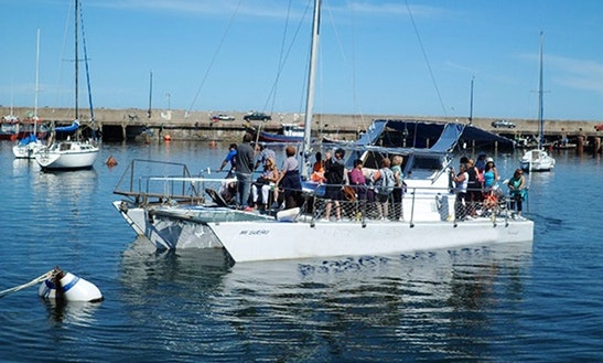 Fishing Catamaran Trips On The