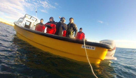 'abramar I' Diving Boat Trips In Puerto Madryn