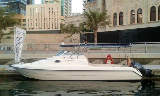 Enjoy Fishing In Dubai, United Arab Emirates On Cuddy Cabin