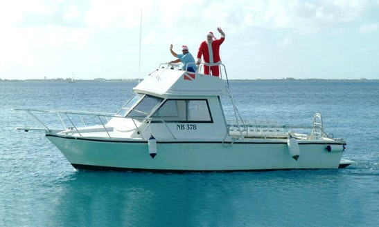 Enjoy Boat Trips In Bonaire
