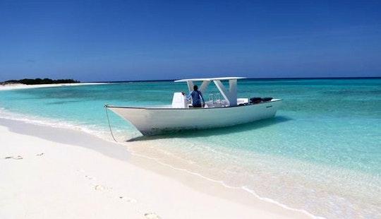 32' Passenger Boat