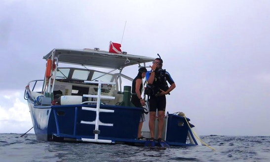 Diving Charter In The Bvi