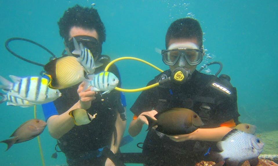 Enjoy Diving Trips in Kuta Selatan, Bali
