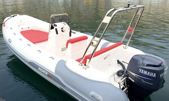 Predator 570 Rigid Inflatable Boat For Rent Without License In Marseille, France
