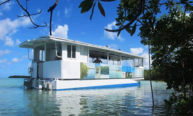 """Taonaba"" Eco Tours on Houseboat in Deshaies, Guadeloupe"