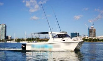 Enjoy Fishing at Main Beach, Queensland on 28' Power Catamaran