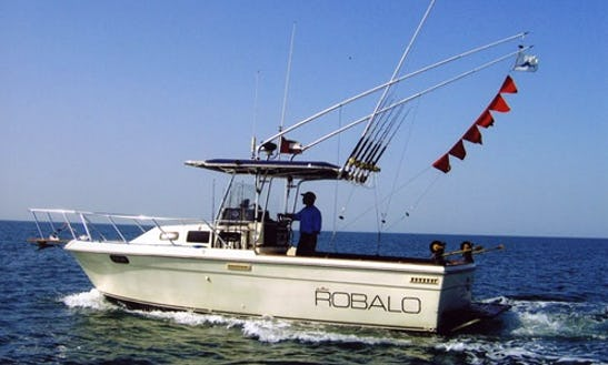 Enjoy Fishing In Abu Dhabi, United Arab Emirates On 28' Robalo Center Console