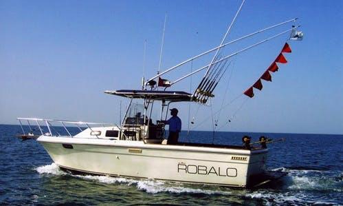 Enjoy Fishing in Abu Dhabi, United Arab Emirates on 28' Robalo Center Console