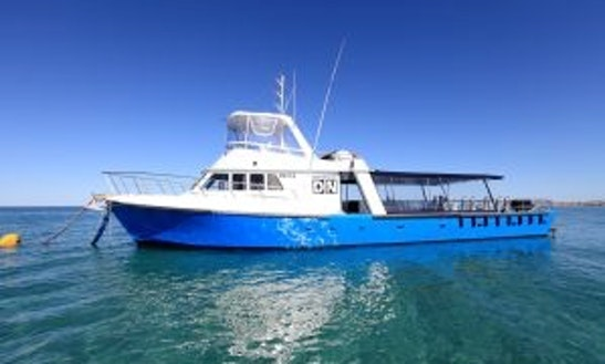 Enjoy Diving Courses In Exmouth, Australia