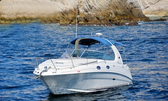 30 ft Seay Ray Motor Boat Rental in Cabo San Lucas