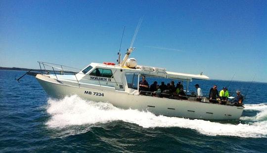 Experience Fishing On 42' Randal Boat In Hastings