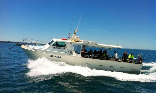 Experience Fishing On 42' Randal Boat In Hastings