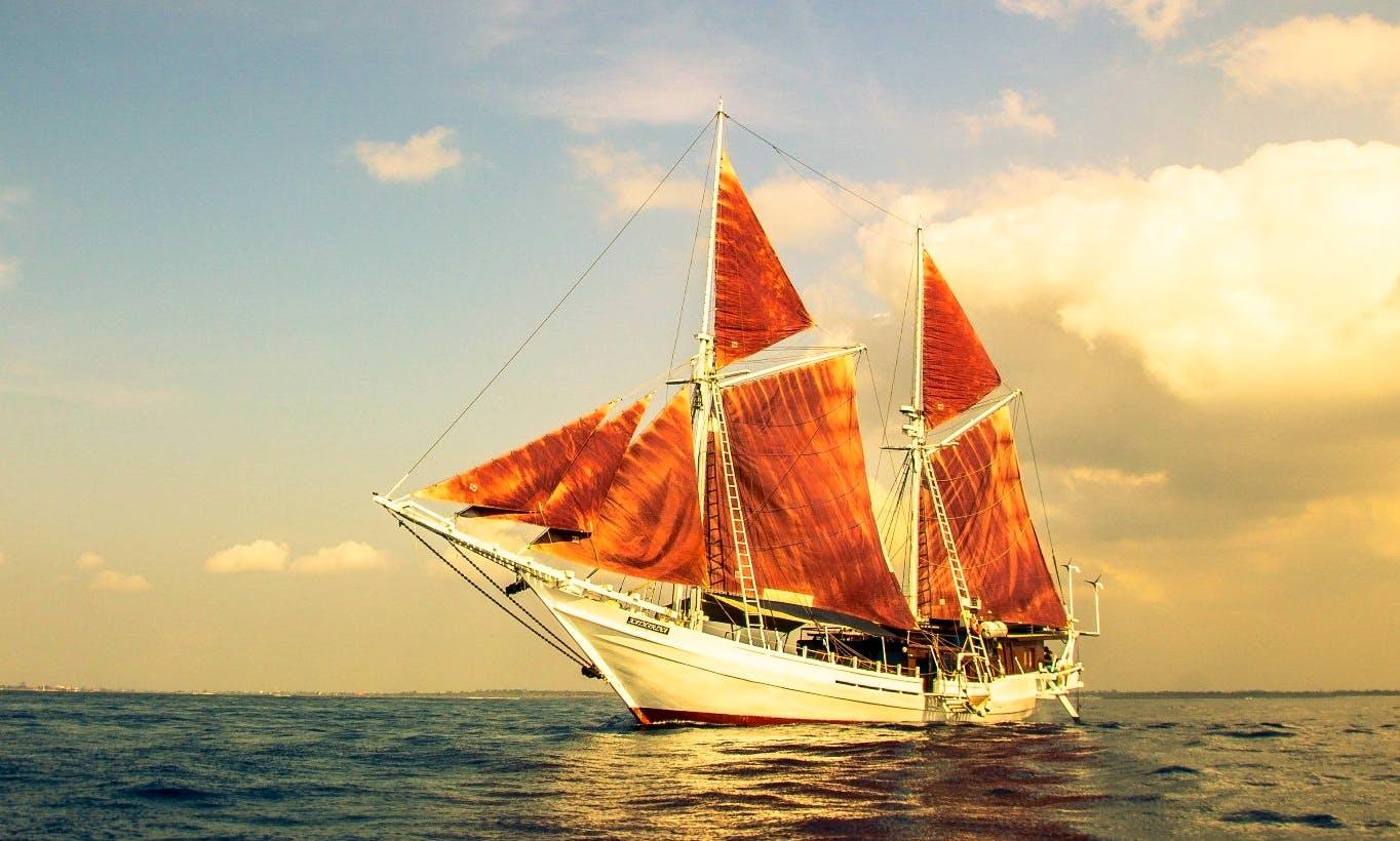 8 Days and 7 Nights Bali – Komodo National Park Snorkeling Cruise With Katharina