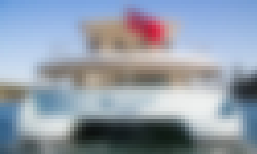 65' Power Catamaran Trips in Sydney, Australia