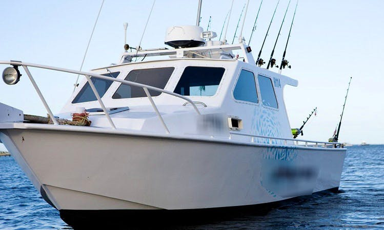 Enjoy Fishing in Port Macdonnell, Australia on 28' Cuddy Cabin