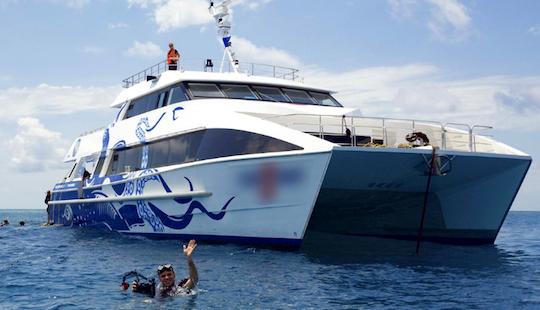 Enjoy Diving Trips In Cairns, Australia