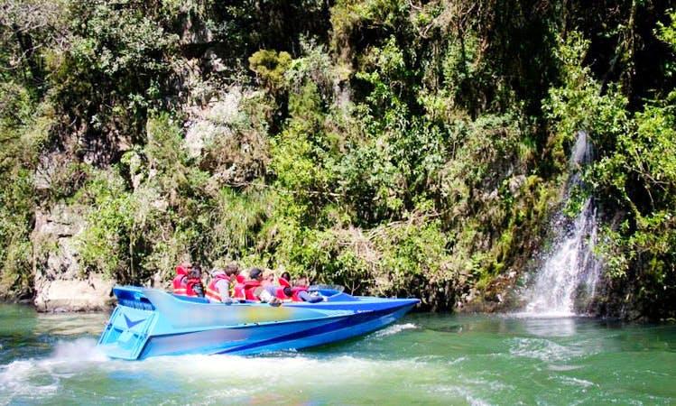 7-Seater Jet Boat Tours in Whakatane