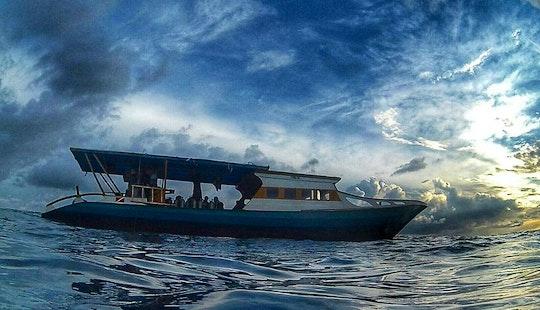 Enjoy Diving Courses In Bunaken, Indonesia