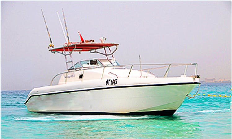 Enjoy Fishing in Ras Al-Khaimah, United Arab Emirates on Cuddy Cabin
