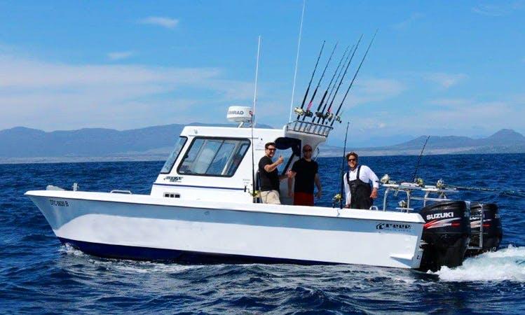 Enjoy Fishing in Hout Bay, Cape Town on Power Catamaran