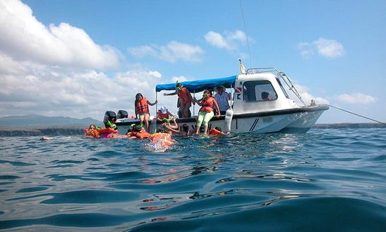 Glass Bottom Boat In Puerto Ayora