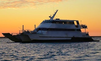 Day Cruise to Lady Musgrave Island and Lagoon in Australia