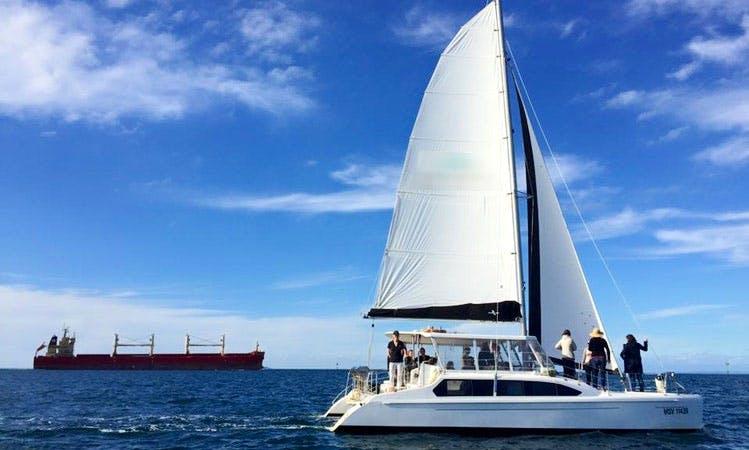 "Cruising Catamaran ""Dolphin II"" Charter in Portsea"