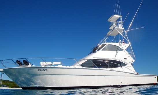 Enjoy Fishing In Yorkeys Knob, Australia On 54' Maritimo Sport Fisherman