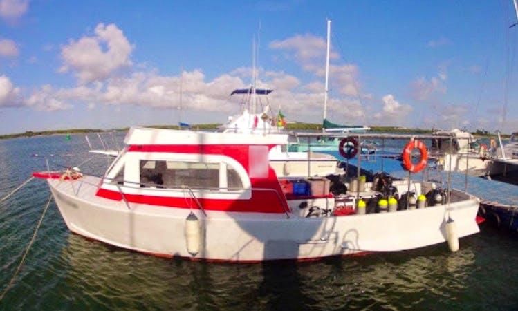 Dive Boat In Natal