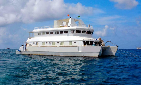 Diving Live Aboard Enterprisel In Paraty